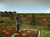 avatarfarm-3