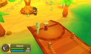 3DS_FL_PortPuertoBeach_PR_FR