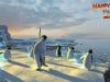 happy-feet-2-le-jeu-video-xbox-360-1307543056-001