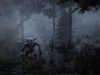 01_Misty_Forest
