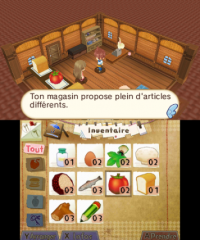 3DS_HometownStory_08_frFR_mediaplayer_large