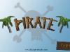 Pirate : Canonball Siege