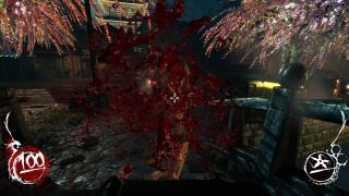 shadowwarrior-32