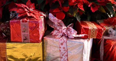 Quel cadeau pour Noël ? La rédaction vous guide…